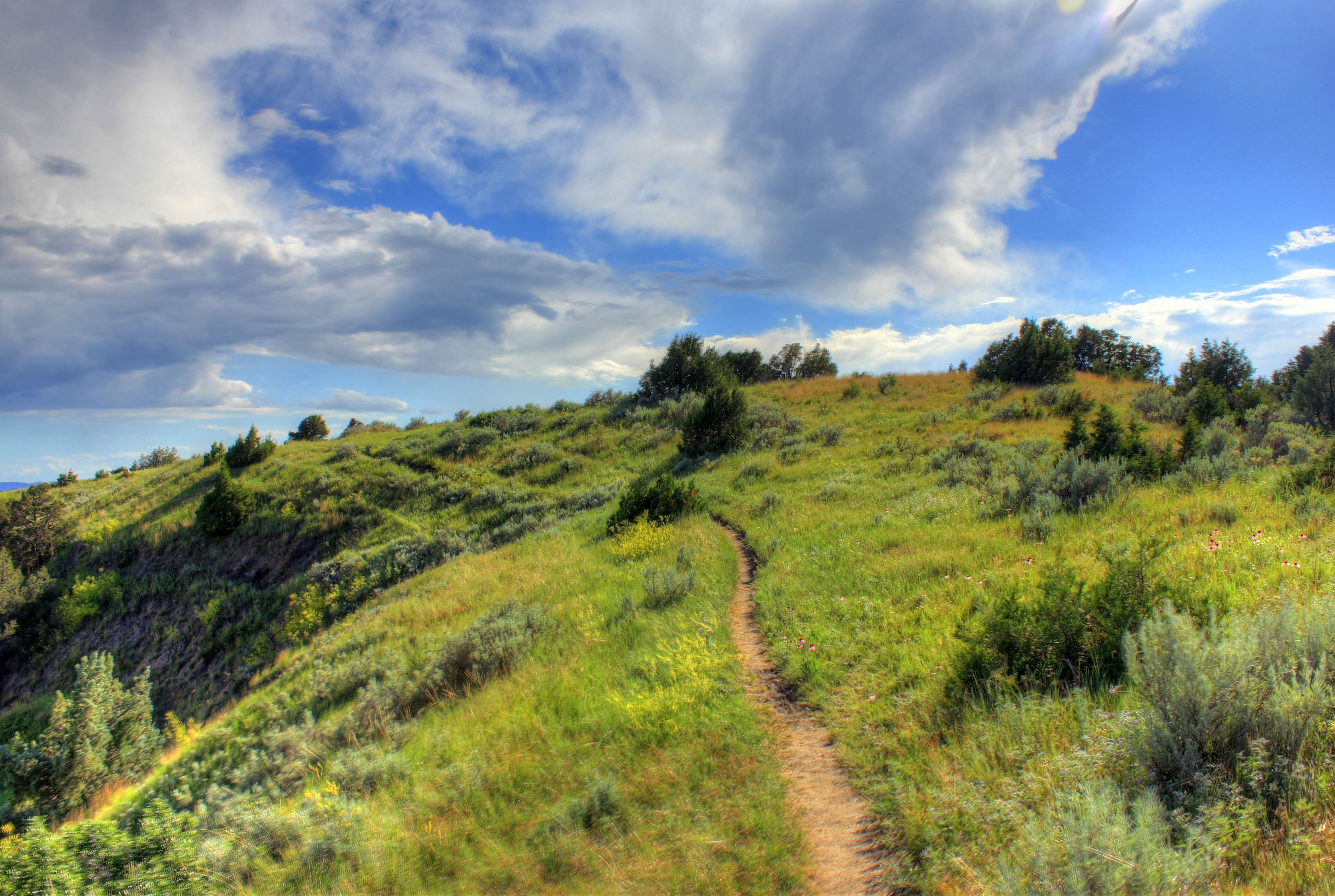 Hiking path at Theodore Roosevelt National Park, North Dakota.