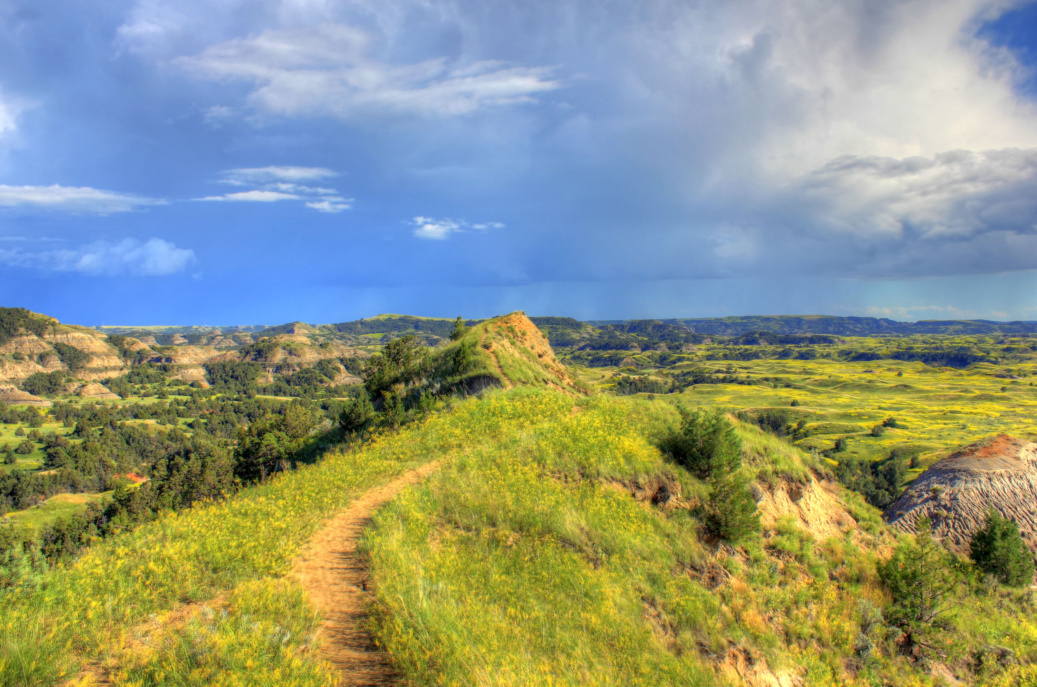 Path at the top of the hill at Theodore Roosevelt National Park.
