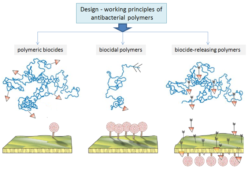 Antibacterial Drugs — From Basic Concepts to Complex Therapeutic.
