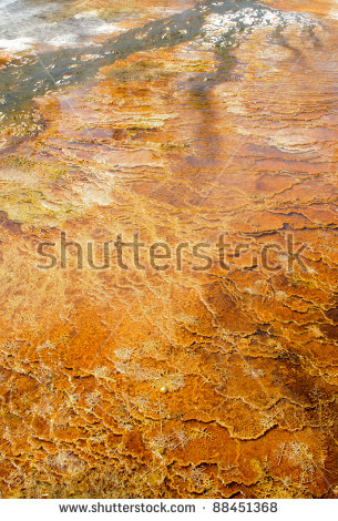 Mammoth Hot Springs Stock Photos, Royalty.