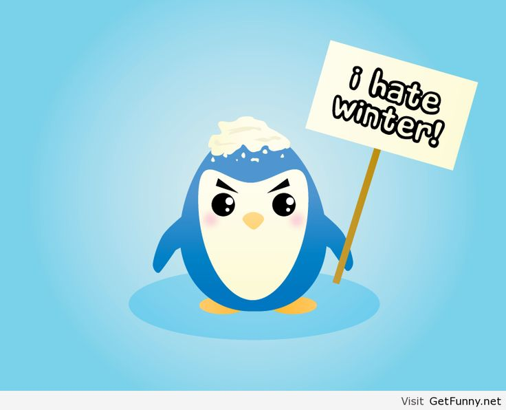 1000+ images about I Hate Winter! on Pinterest.