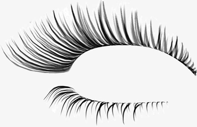Thick Eyelashes Thin Holiday PNG, Clipart, Beauty, Beauty.