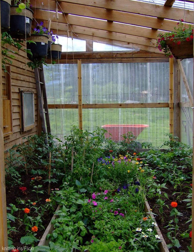 Greenhouse idea.