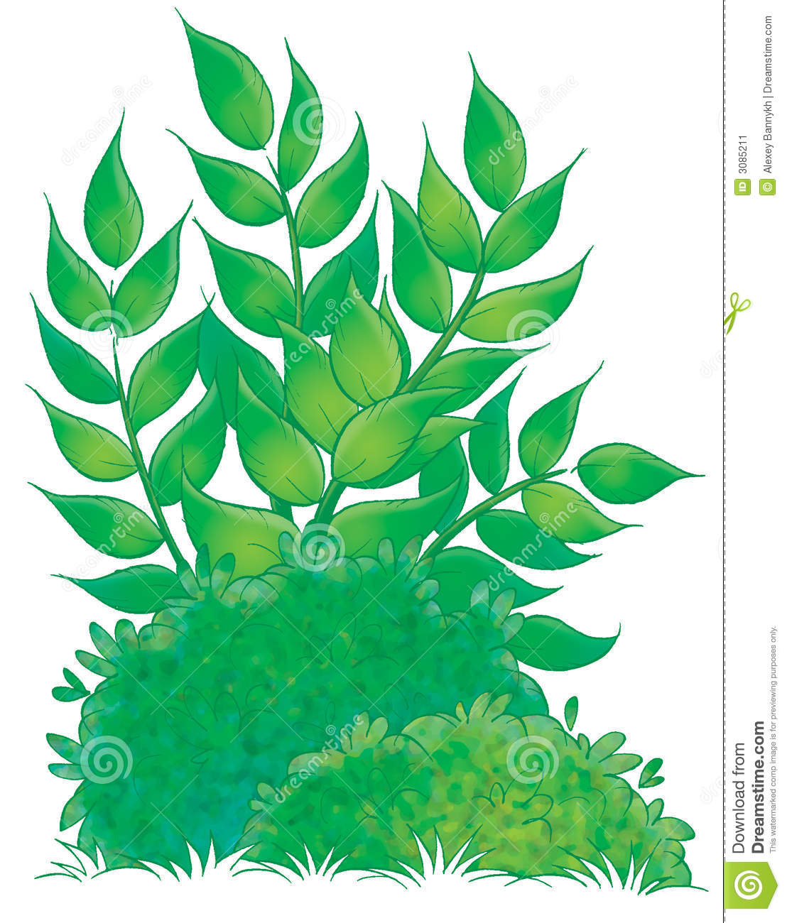 Forest Thicket Clip Art.
