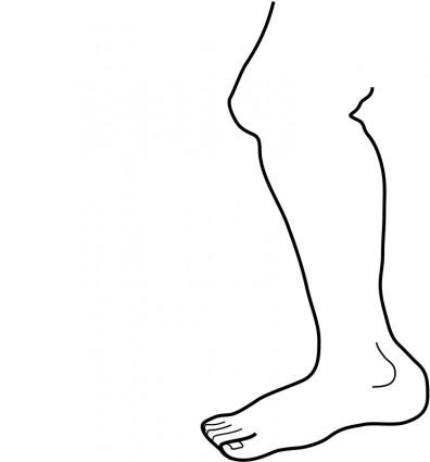 Leg Clip Art.