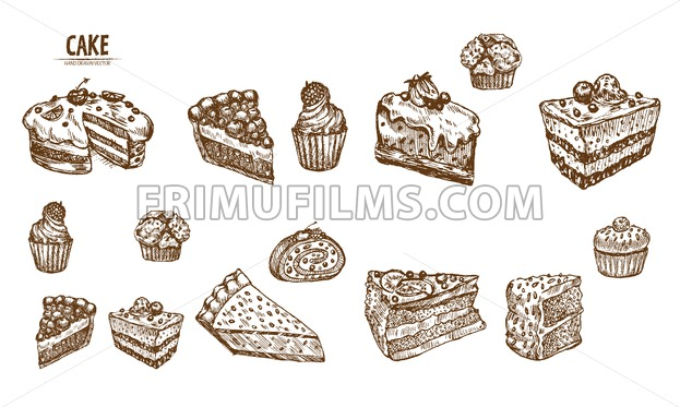 Digital vector detailed line art sliced cake and cupcakes hand drawn retro  illustration collection set. Thin artistic pencil outline. Vintage ink.