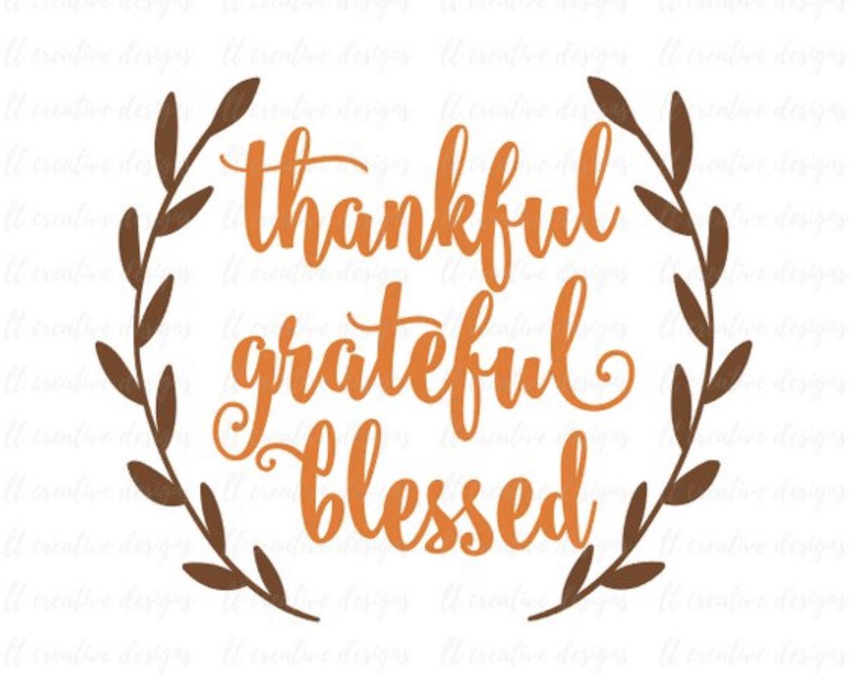Thankful… Grateful… Blessed….