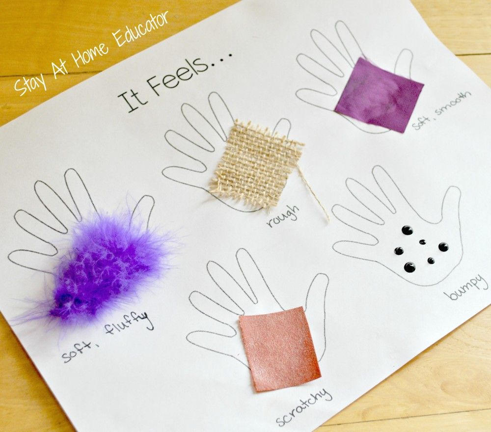 Four Activities to Learn About the Sense of Touch.