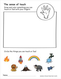 The five senses worksheets for preschools.