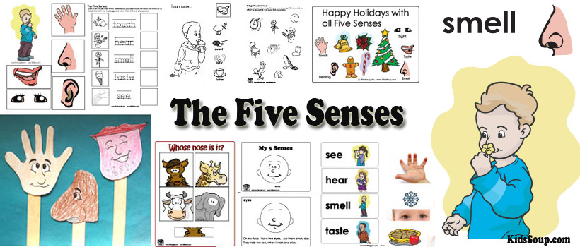 My Five Senses Preschool Activities, Lessons, and Printables.