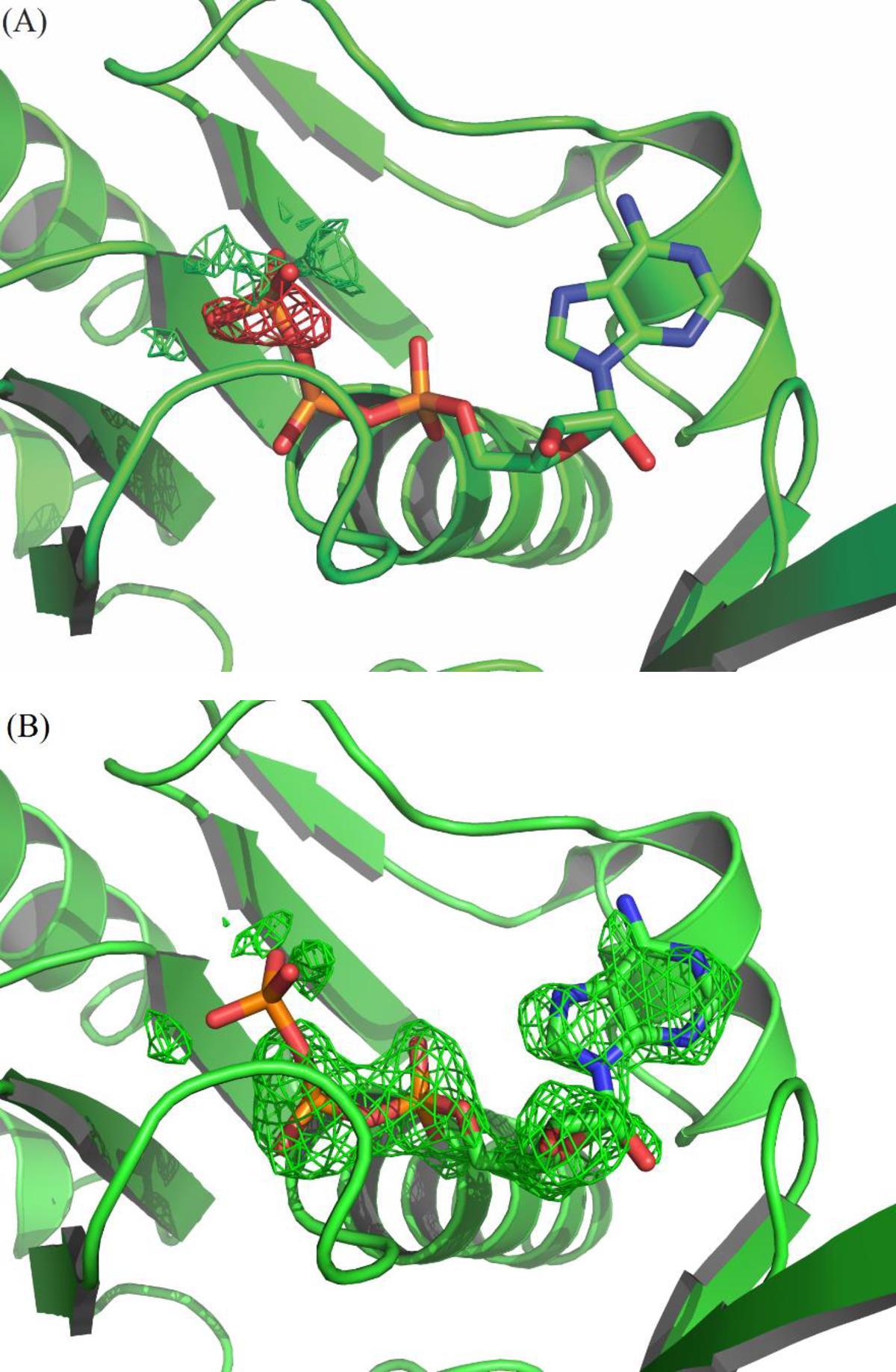 PLOS ONE: Structural and Functional Studies of H. seropedicae RecA.