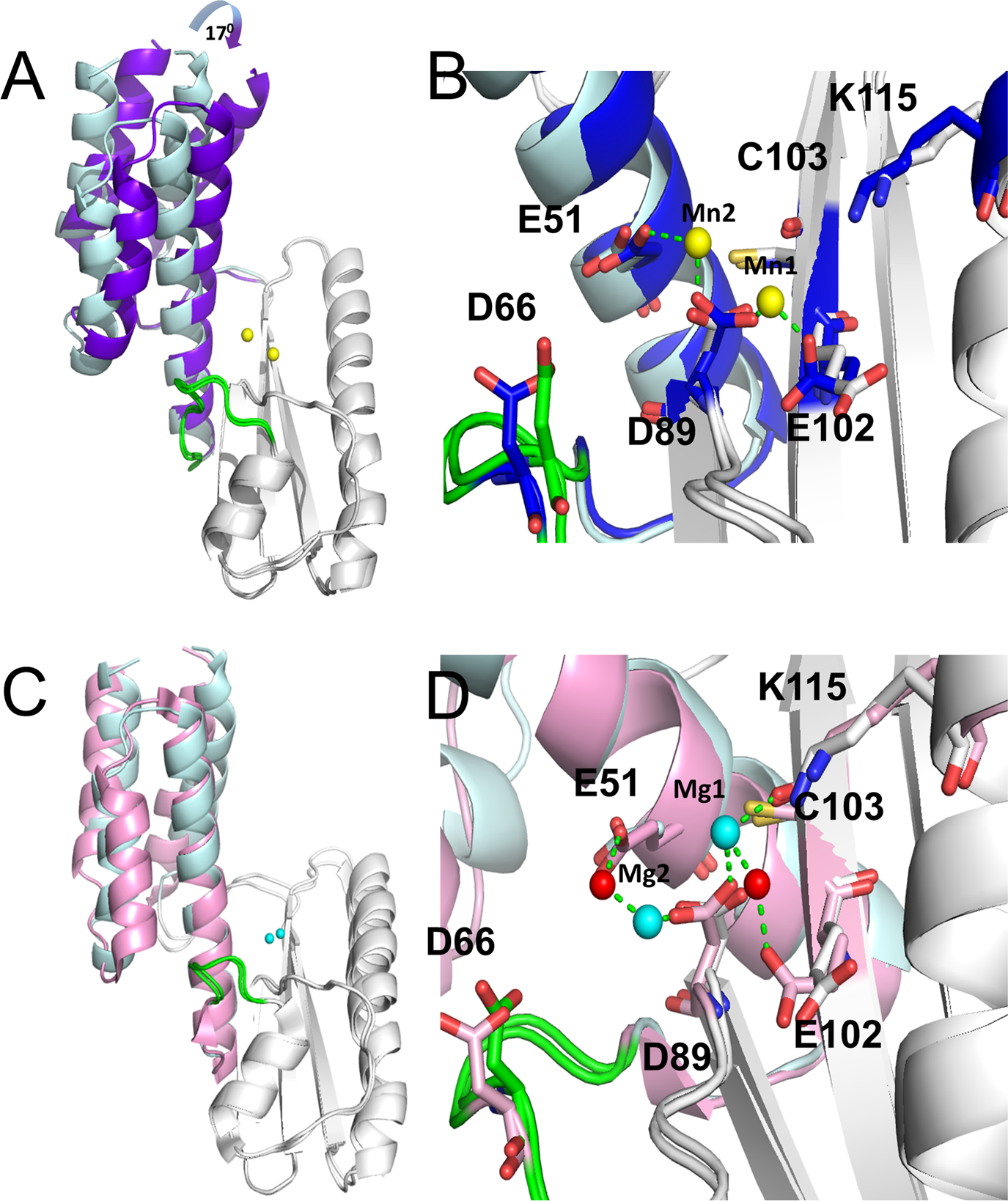 PLOS Pathogens: Comparative Structural and Functional Analysis of.
