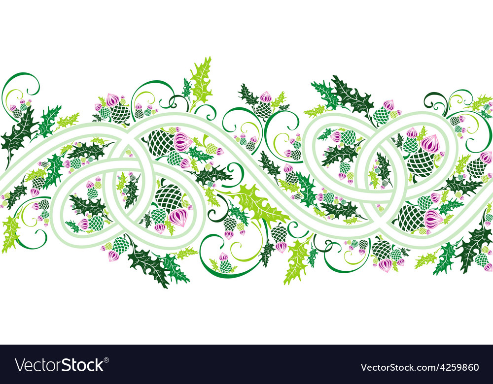 Border with celtic ornament and flowers thistle.