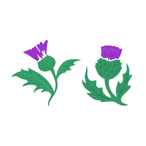 Thistle clipart 7 » Clipart Station.