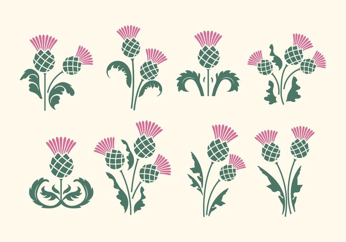 Free Thistle Vector.