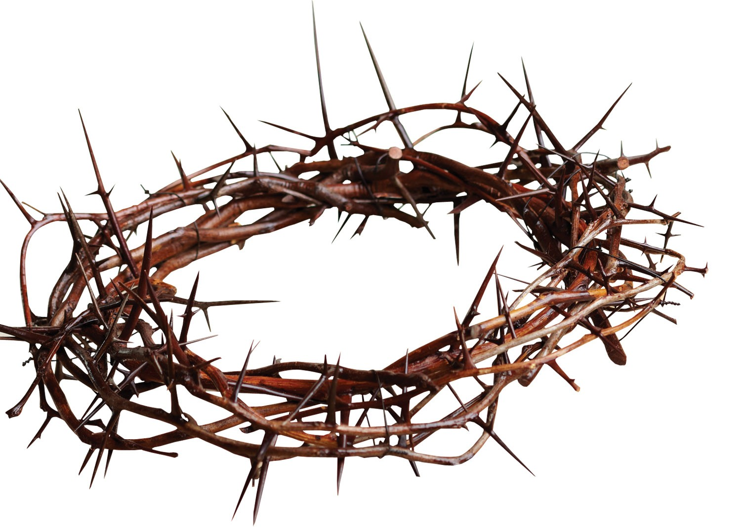 Crown Of Thorns PNG HD Transparent Crown Of Thorns HD.PNG.