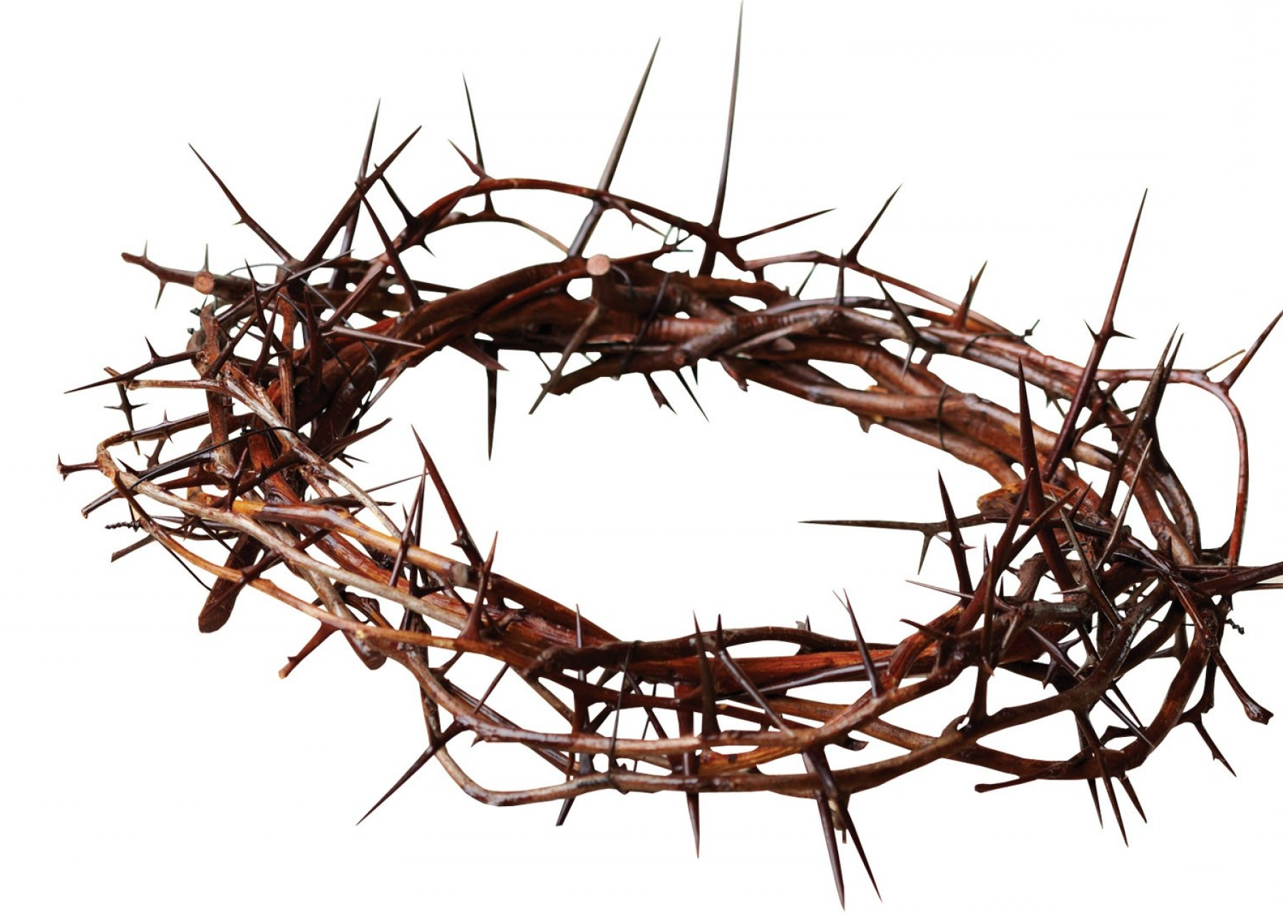 Best Crown Of Thorns With Cross Clip Art Vector Layout.