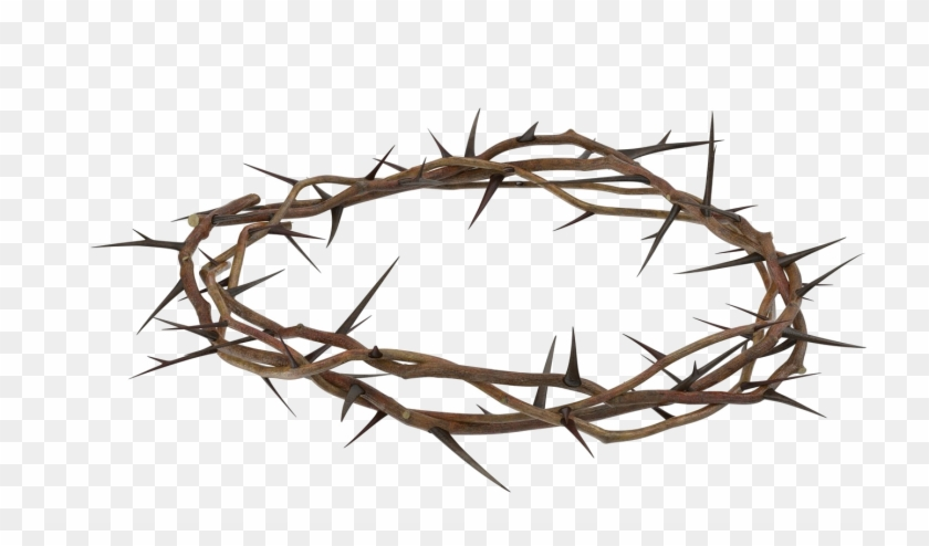 Transparent Background Crown Of Thorns Png, Png Download.