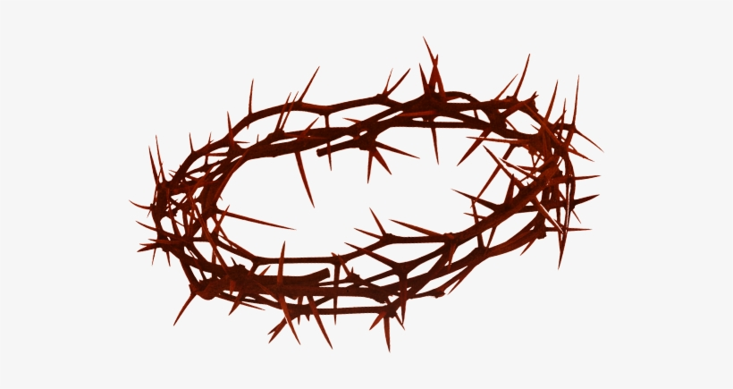 Crown Of Thorns Png Hd Transparent Crown Of Thorns.
