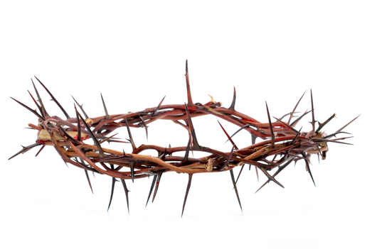 Download Free png Crown of Thorns.