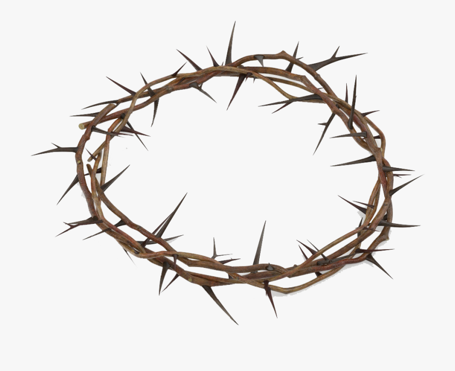 Crown Of Thorns Png Free Download.