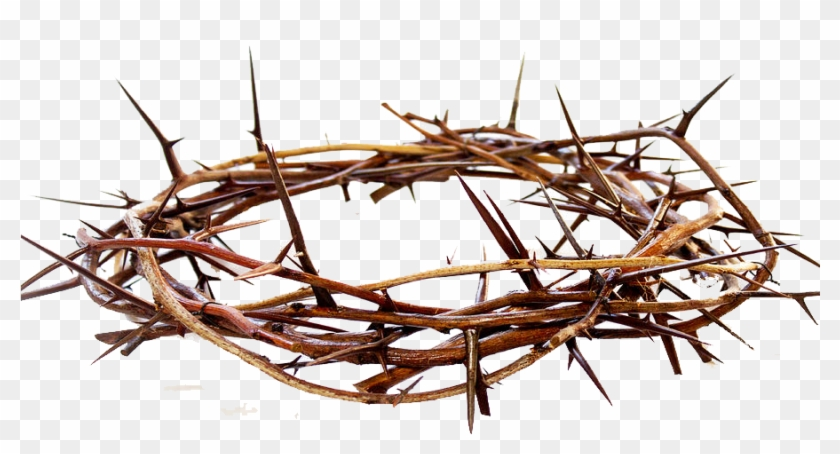 Crown Of Thorns, HD Png Download.