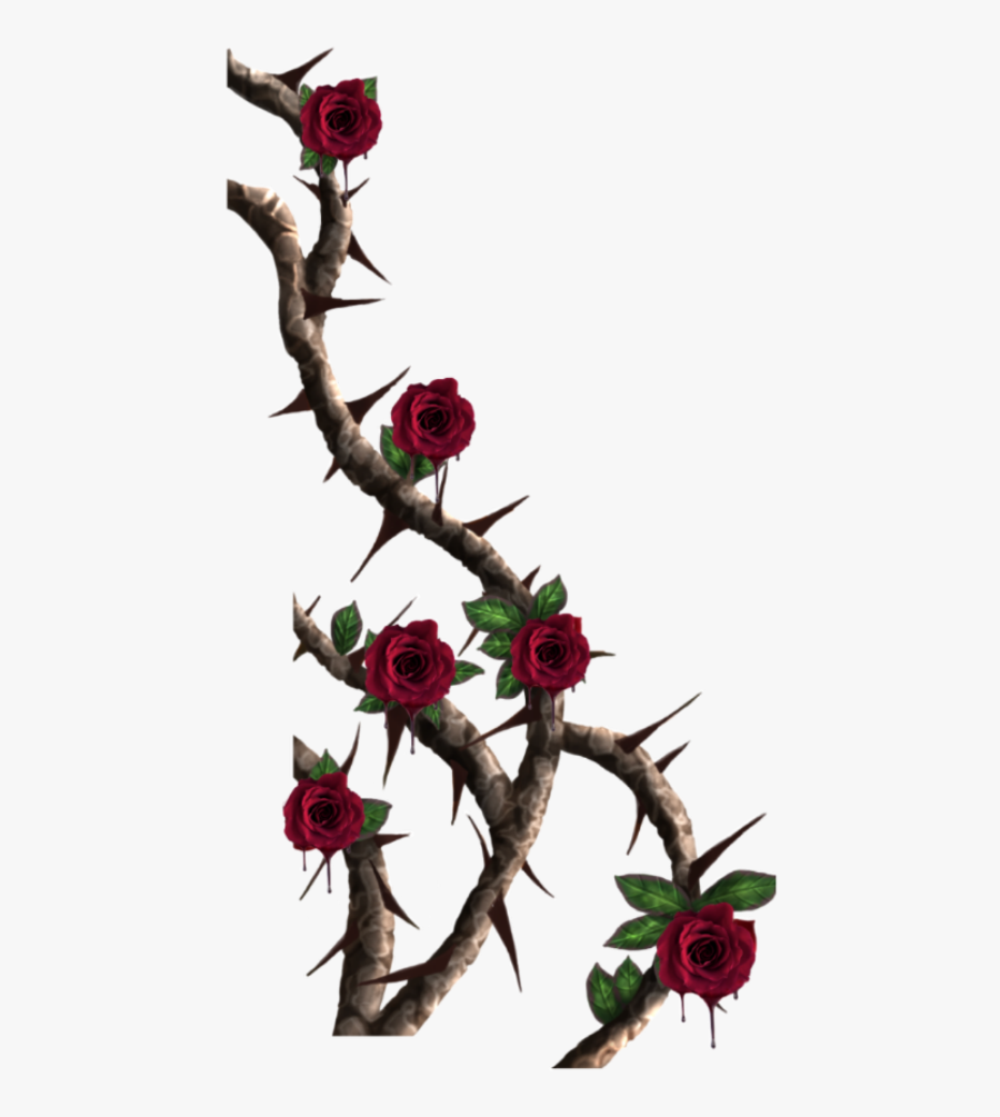 Thorn Vine Png , Transparent Cartoons.