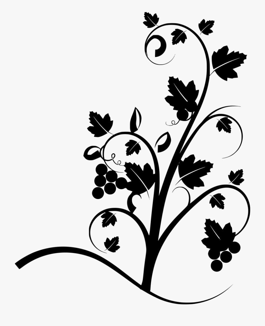 Transparent Thorn Vine Png.
