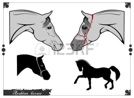 Arabian Horses Cliparts, Stock Vector And Royalty Free Arabian.