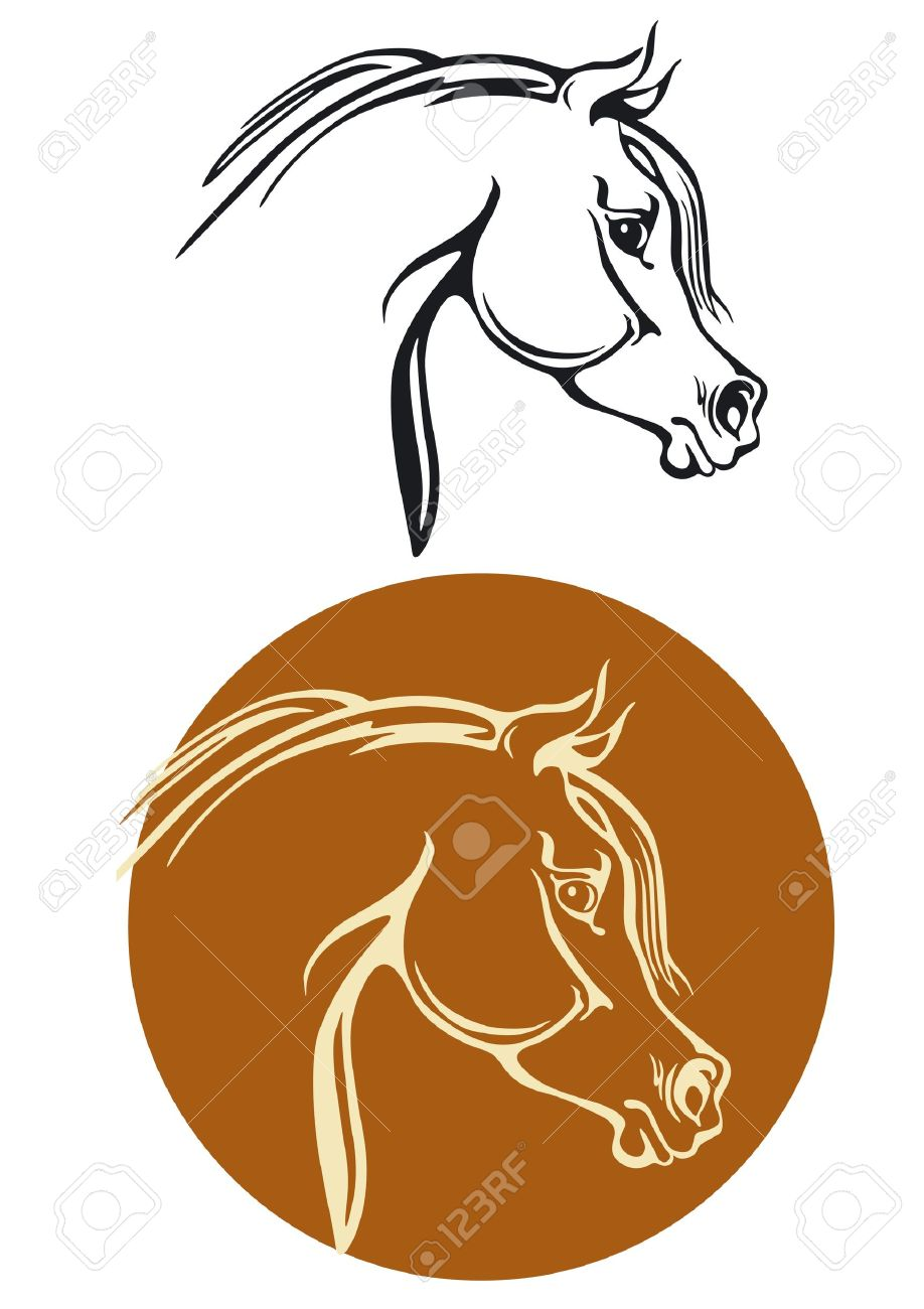 Thoroughbred Horse Head Royalty Free Cliparts, Vectors, And Stock.