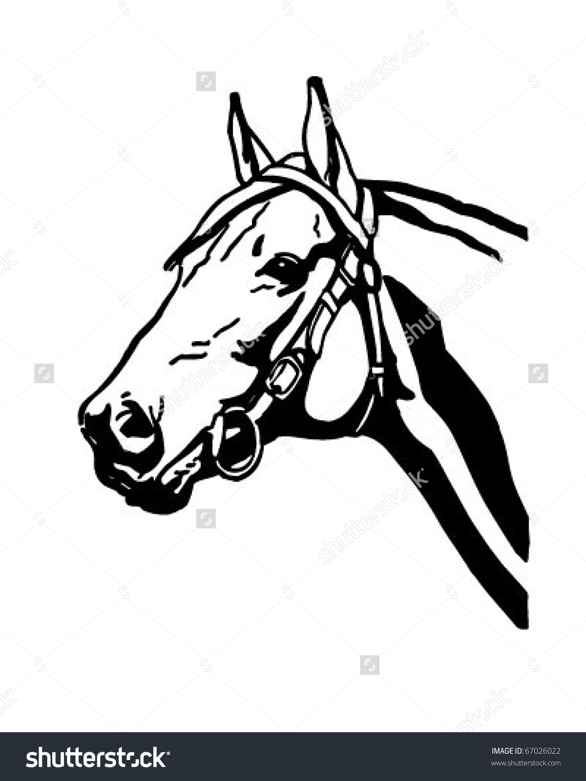 Thoroughbred horse head clipart.