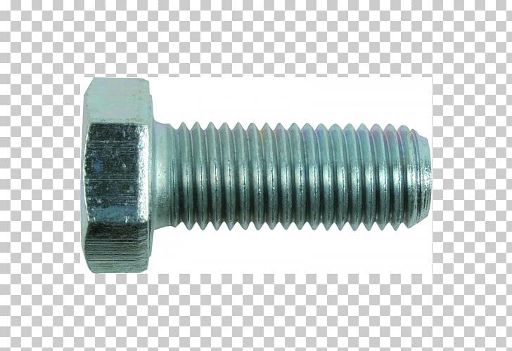 Screw thread Nut Fastener Bolt, screw PNG clipart.
