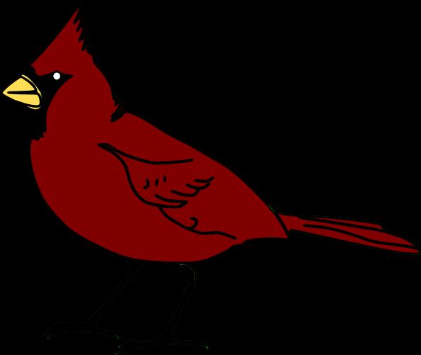 ti]RTZI[/ti]Mechelen Bird park.