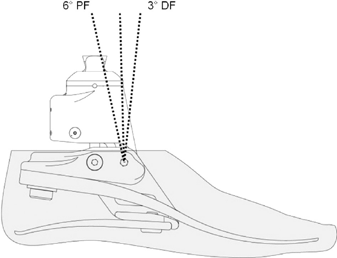 Schematic diagram of hydraulic foot.
