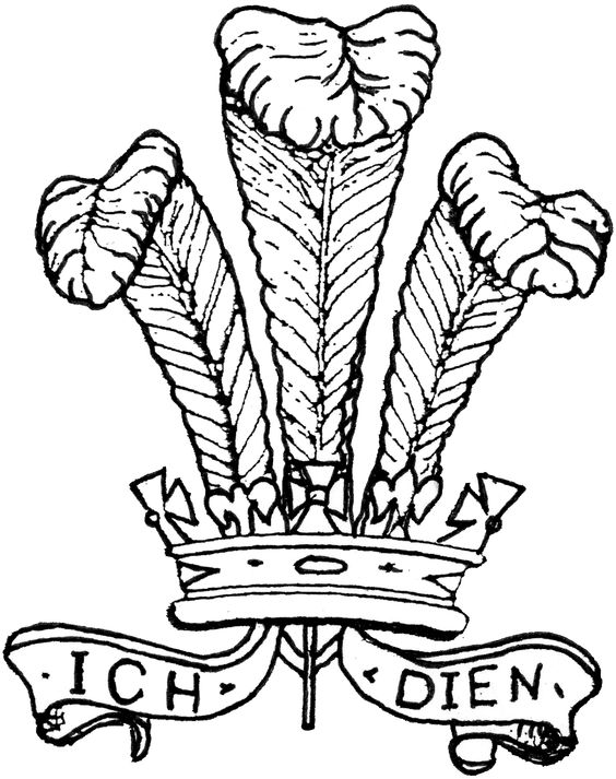 The Prince of Wales Feathers, usually the Company Badge of Bravo.