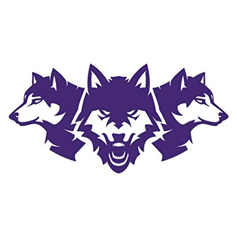 Amazon.com: Wolf Pack Three Wolves 7 inch Purple Indoor.