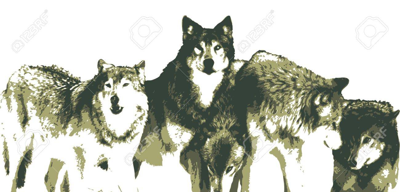 Wolf Pack Drawing at GetDrawings.com.