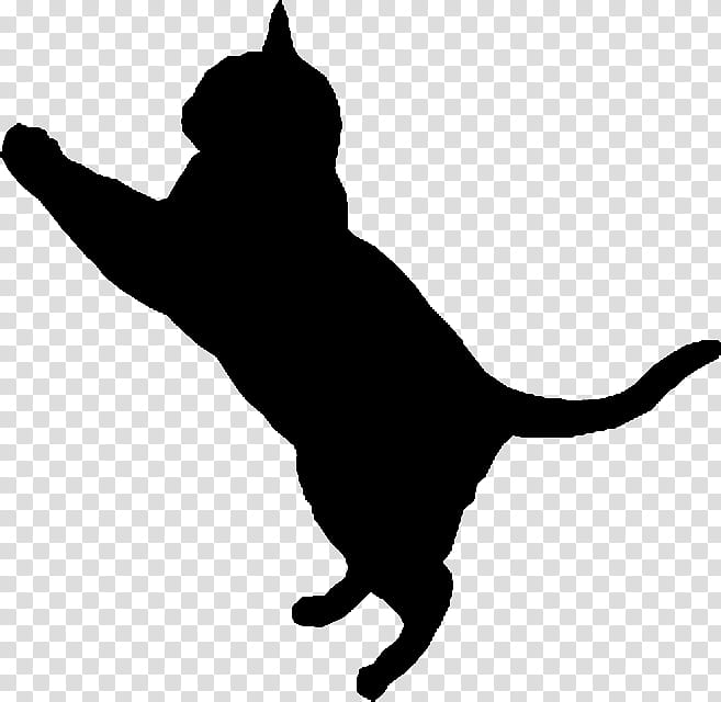 Cat Silhouette , cat illustration transparent background PNG.