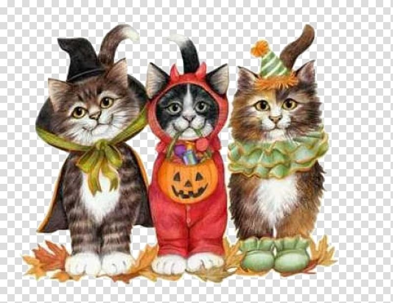 Cat Kitten Trick.
