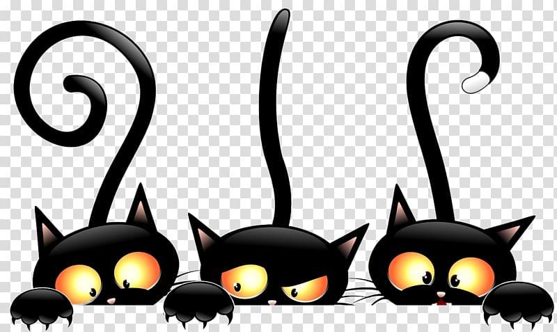 Three black cats, Black cat Halloween , Witch Cat.