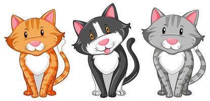 Kitten Free Vector Art.