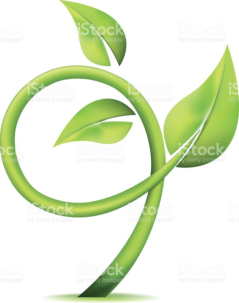 Growing Circular Vine Icon With Three Leaves Isolated On White.