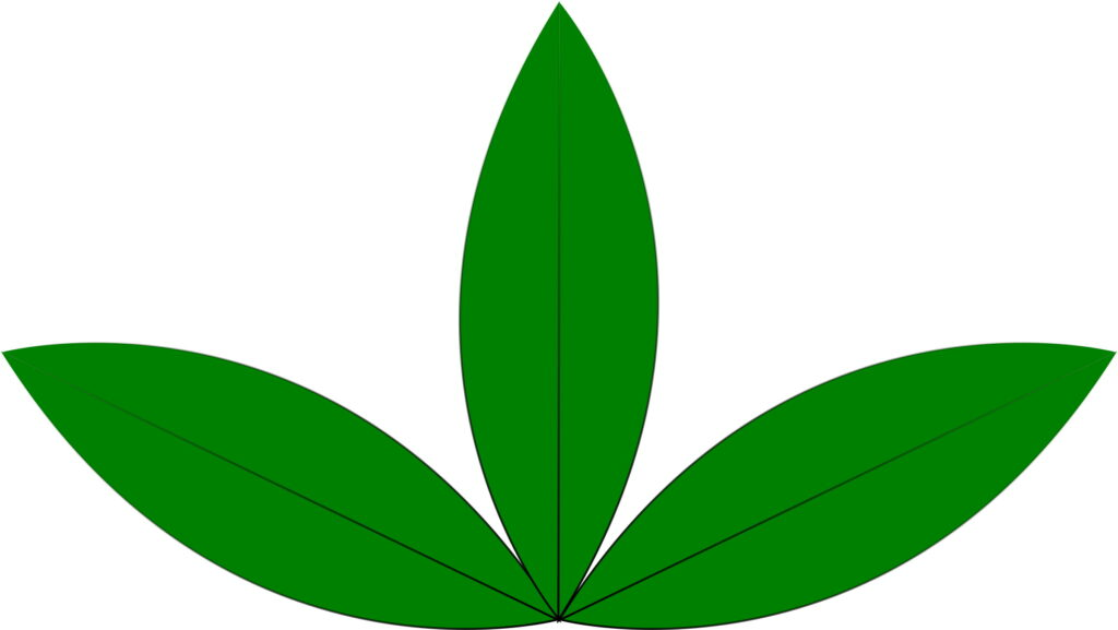 This Free Icons Png Design Of A Green Sprout Three Leaves.