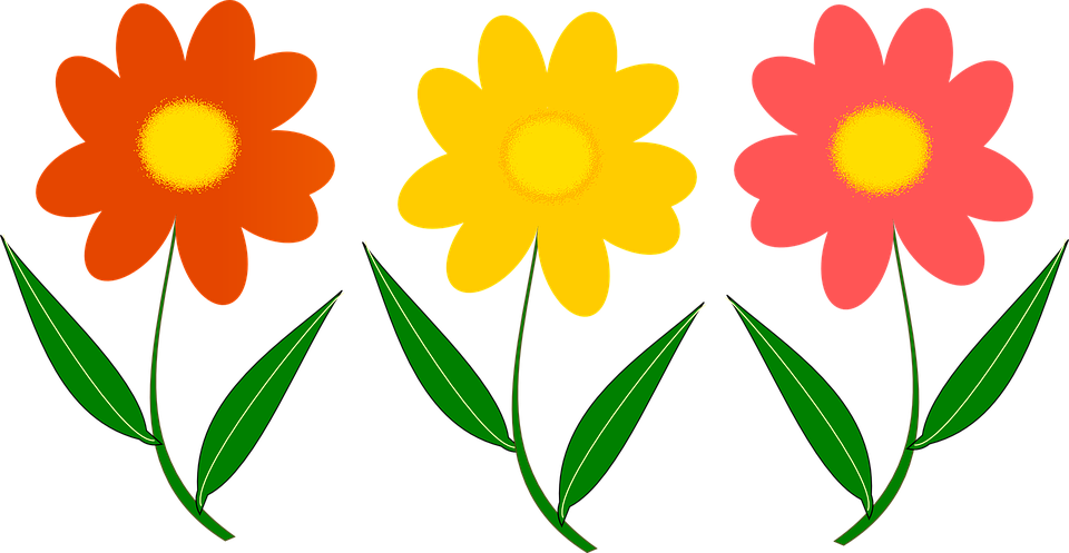 Three, Flowers.