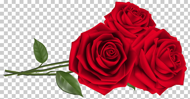 Rose Red Teleflora Flower bouquet, Three Red Roses , red.