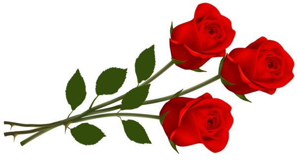 Red roses clip art images free clipart images.