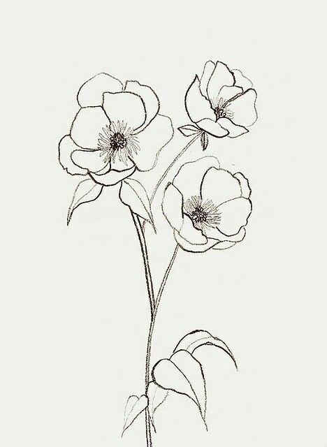 Flor 3.