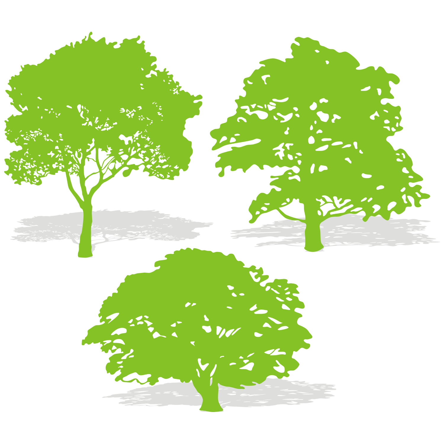 Green Tree Silhouette Png.