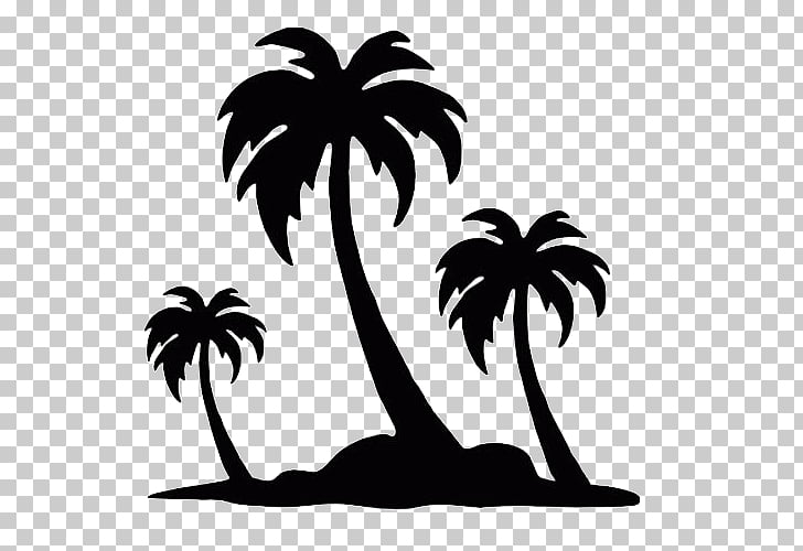 Arecaceae Silhouette Tree , tropical coconut trees PNG.