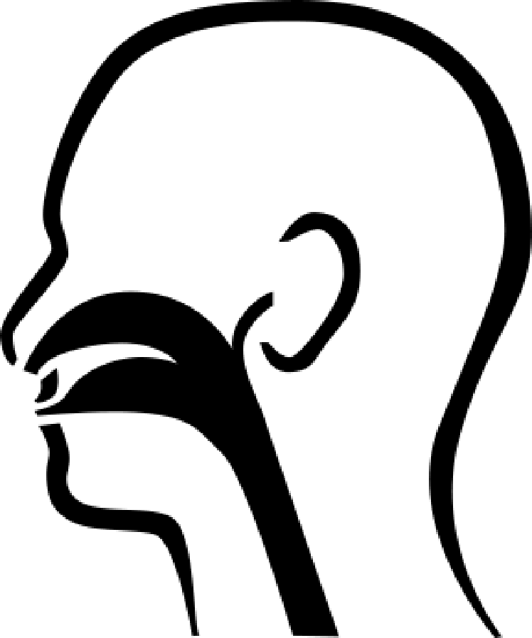 Ear Nose and Throat Clip Art.
